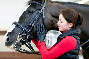 A Sneak Peak at an equine Employers Wish List