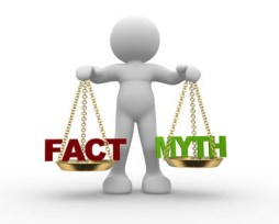 Equine Apprenticeship Myths - BUSTED! Facts and Myths