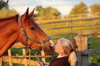 Equine Apprenticeship Myths - BUSTED! Linda Hudson of Equic8 Equine