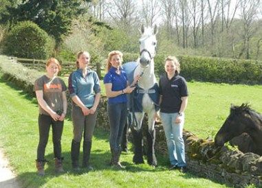 Eventing Grooms and Eventing Groom Jobs - Team Spirit