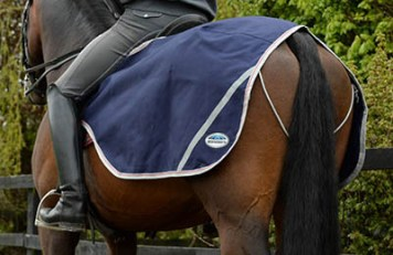 Keeping Your Equine Athletes Warm - Naylors Exercise Sheets