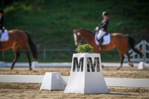 Get into Dressage to Music - Alanna Clarke
