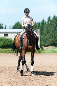5 reasons why Apprentice Grooms are always winning - Guarantee Riding