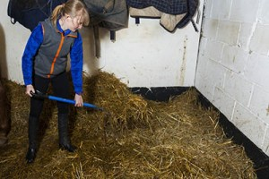 The Ultimate Equestrian Apprentice Startup Kit - Working Pupil