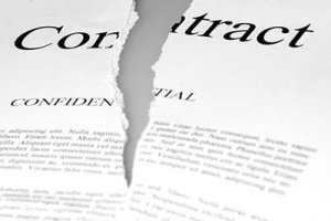 Employment contracts in the equine industry - Broken Contracts