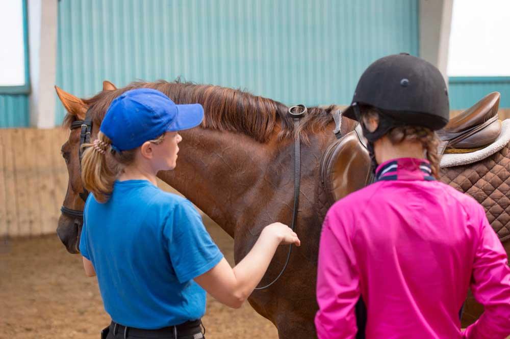 Person Teaching Horse Riding