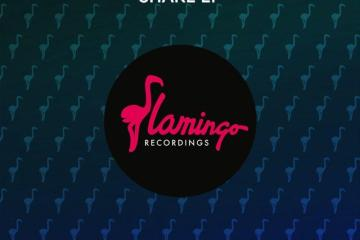 Elliot Fitch Shake EP Flamingo Funky Bass