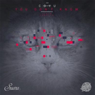 Coyu You Don't Know album sampler Suara