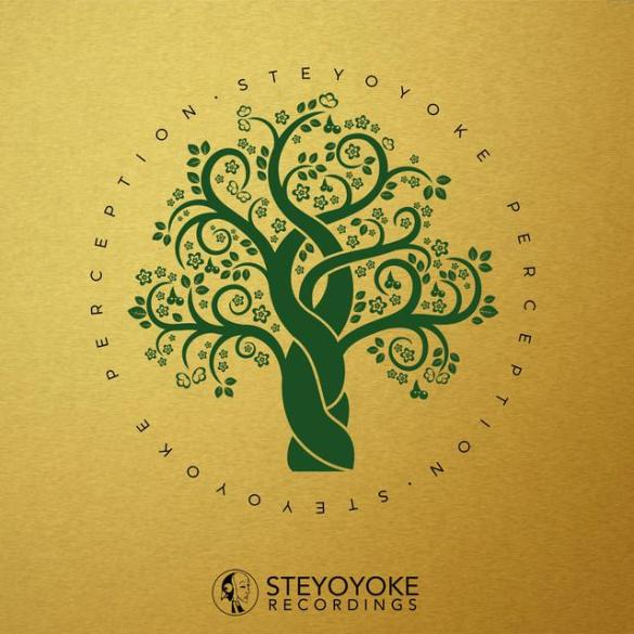 biskuwi Salve Steyoyoke