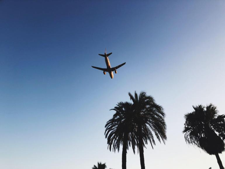 Airplane over Ibiza palms