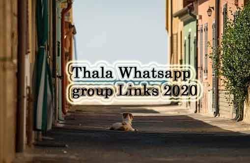 Thala Whatsapp Group Link