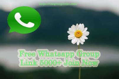 Free Whatsapp Group Link