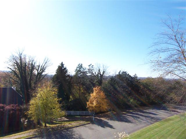 204_Winter_Hill_Superb_front_views2