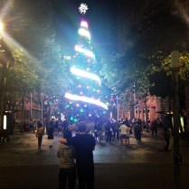 Christmas Tree, Martin Place