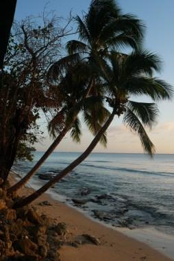 Barbados west coast beach
