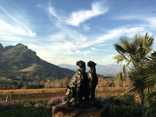 Delaire-Graff-Stellenbosch-art