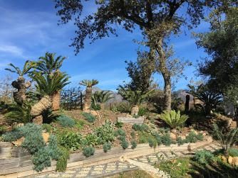 Gardens-Babylonstoren-Cape-Winelands