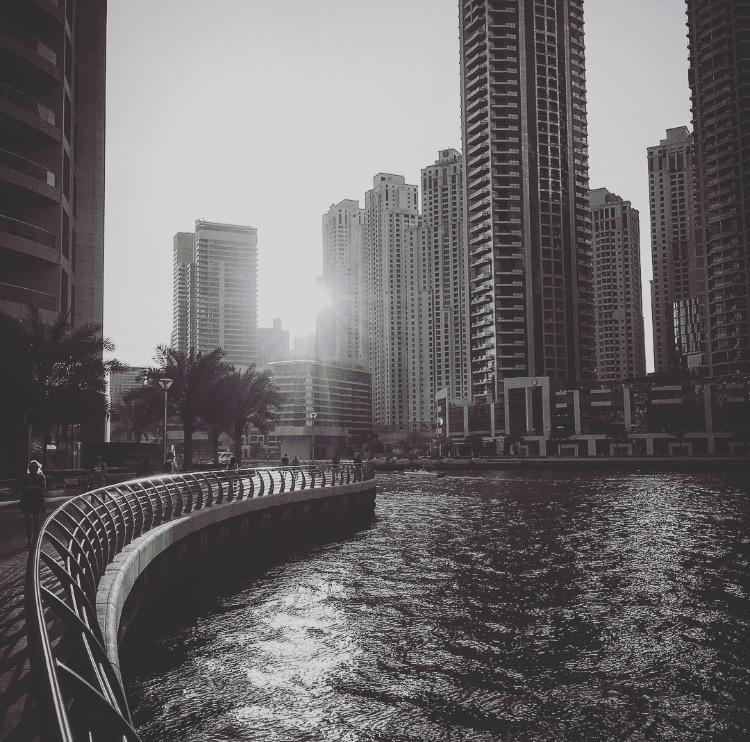 Where to eat: Dubai Marina restaurants – Entertainer Fine Dining