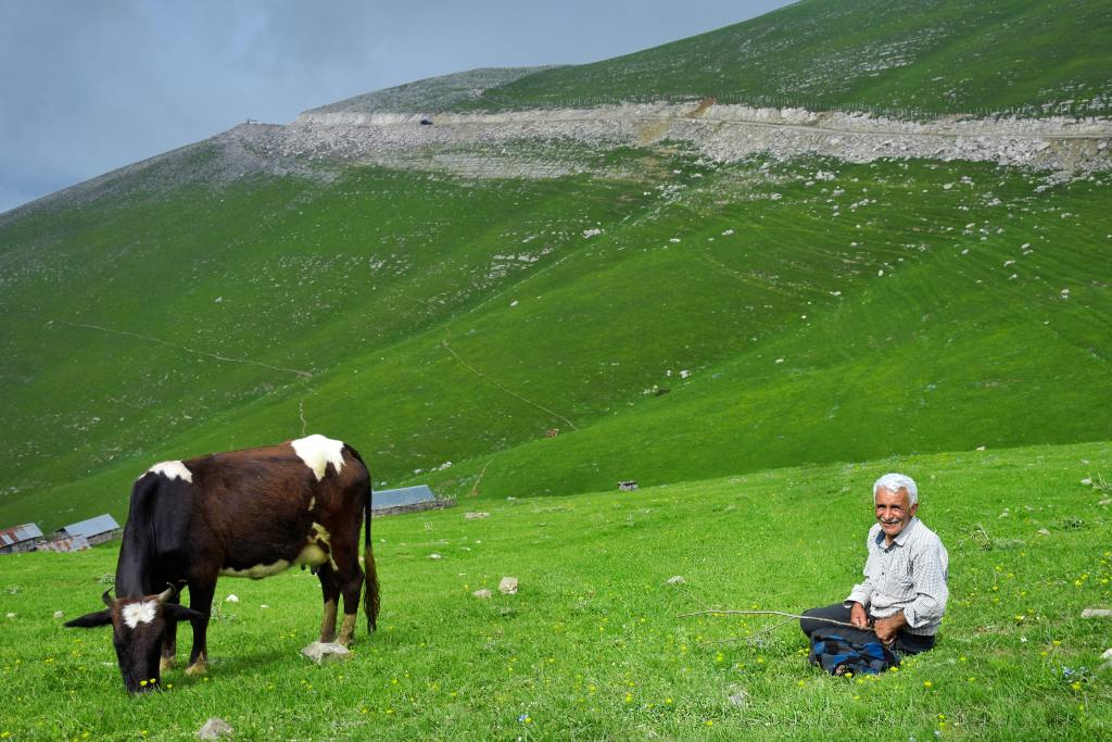 a man sitting next to his pet cow