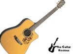 Blueridge BR-160: Dreadnought Guitar