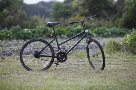 Bicycles are common transportation on St. Helena Island.