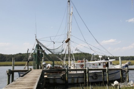 Bradley's Pride owned by James Bradley and James Bradley Jr. is a Shrimping Boat located on St. Helena Island.