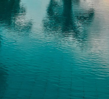 An infinity pool with reflections of the trees
