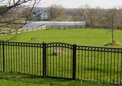 Black Arched Ascot with Circles Gate