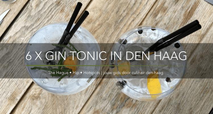 6 X GIN TONIC IN DEN HAAG