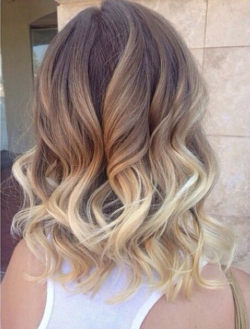 Classic Brown to Blonde Ombré 1