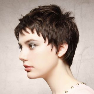 Short Hairstyles And Haircuts For Short Hair In 2018 Thehairstyledaily