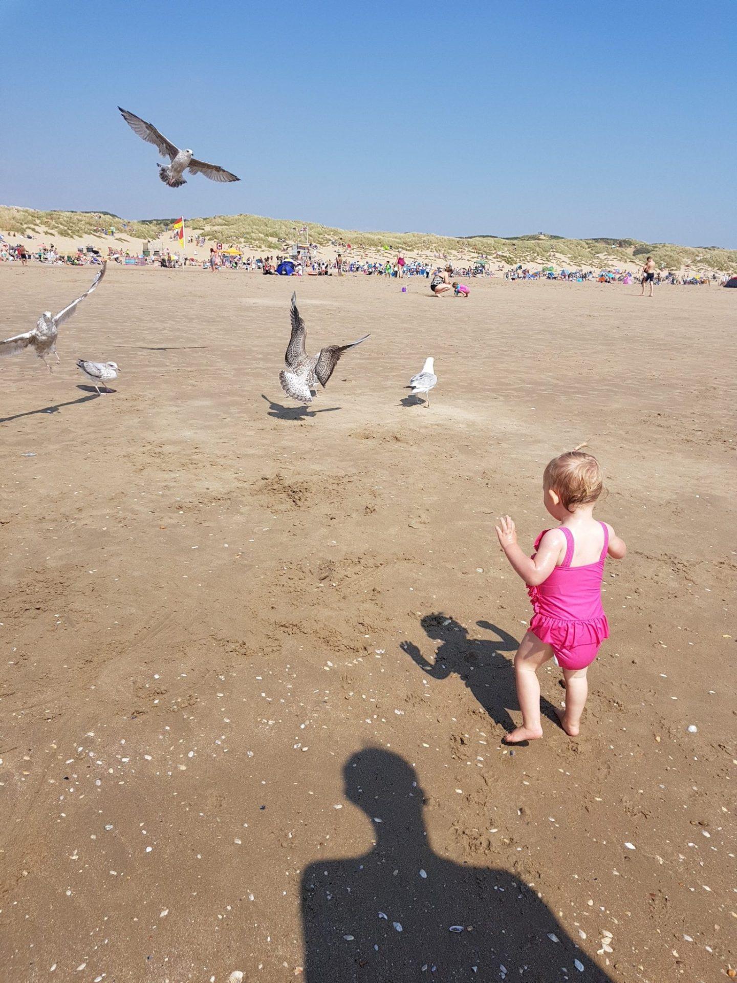 little girl chasing seagulls