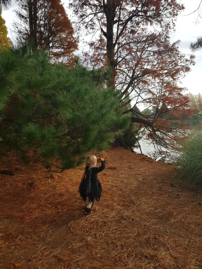 Little girl in witches outfit in forest