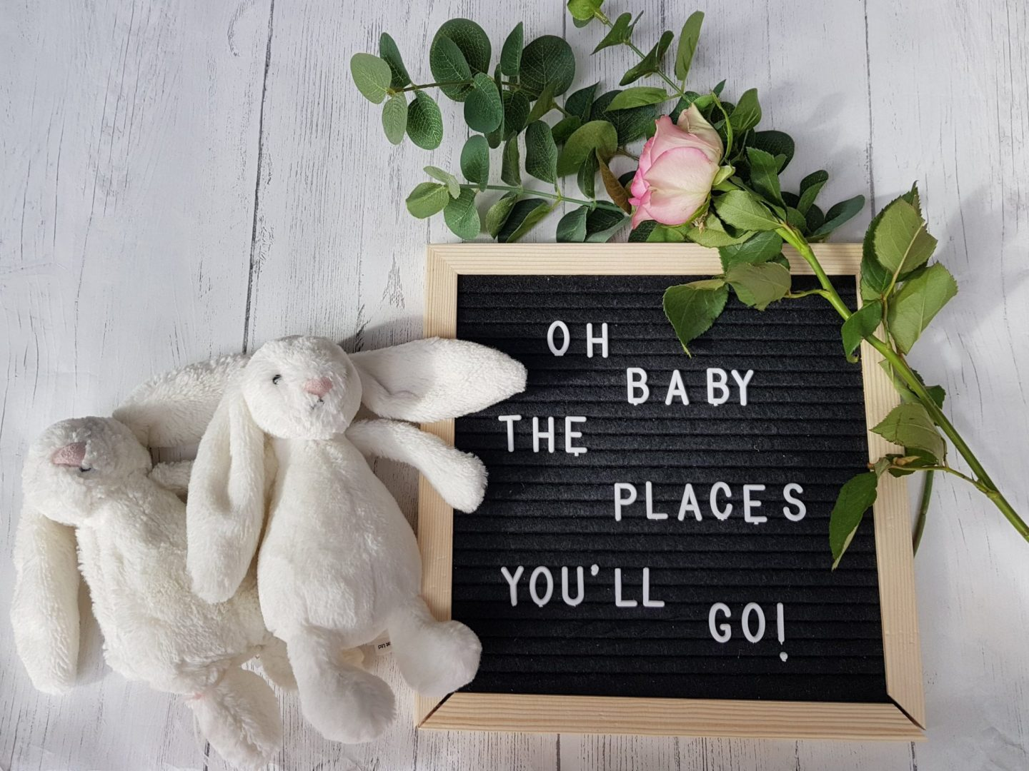 Oh Baby The Places You'll Go Letter Board