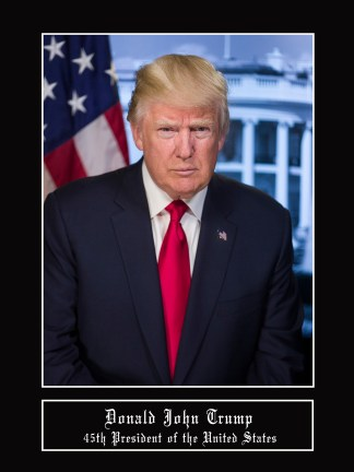 president donald trump poster