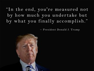 president donald trump quote poster