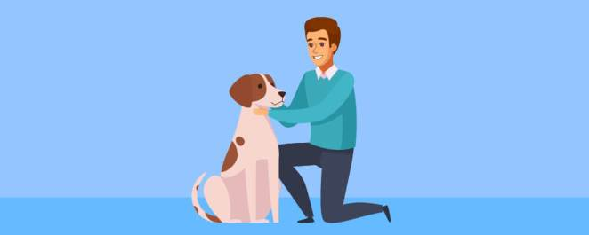 Why You Should Train Your Dog