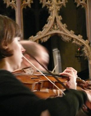 violins3_full