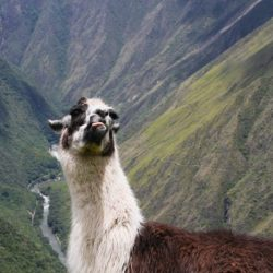 Inca Trail Trek Plan