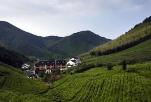 Monday's Tea: Unas vacaciones dedicadas al té