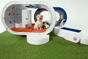 Samsung creó una casa para perros