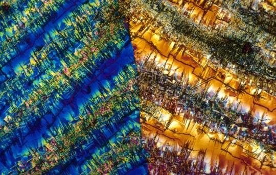 Así se ve el tequila (y otros drinks) bajo el microscopio - cosmopolitan