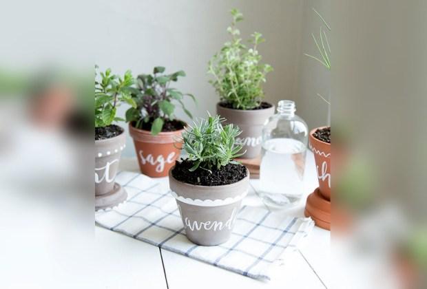 Cultiva tus propios condimentos de cocina con estas cinco ideas de decoración - macetas-decoradas-1024x694