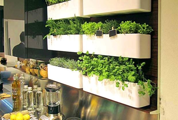 Cultiva tus propios condimentos de cocina con estas cinco ideas de decoración - macetas-largas-1024x694