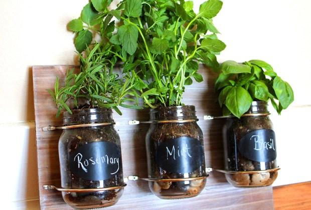 Cultiva tus propios condimentos de cocina con estas cinco ideas de decoración - mason-jar-hierbas-1024x694