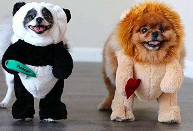 Los disfraces para perro más divertidos para este Halloween - disfraz-peerrito-2