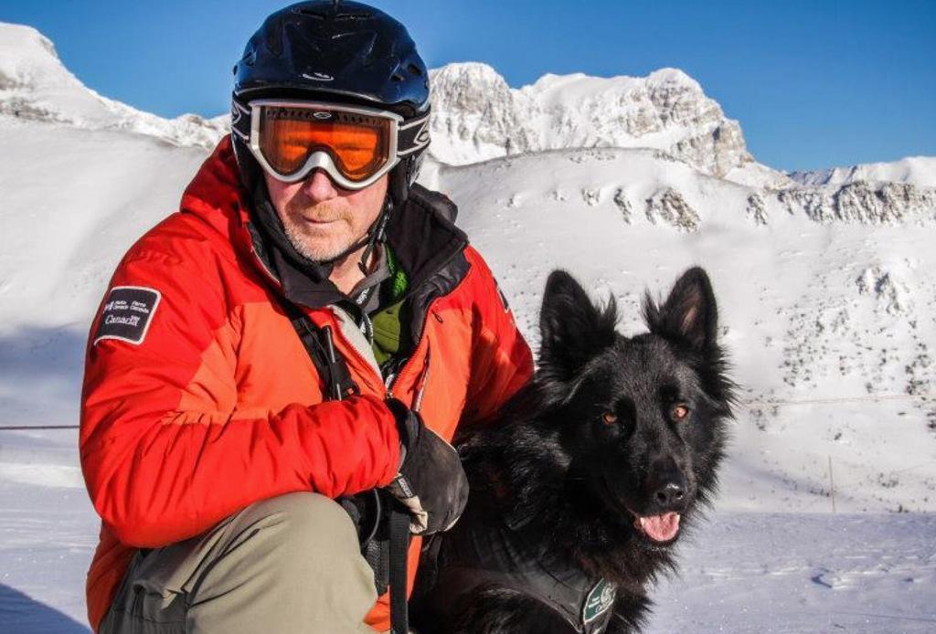5 resorts dog-friendly para esquiar - perro-nieve
