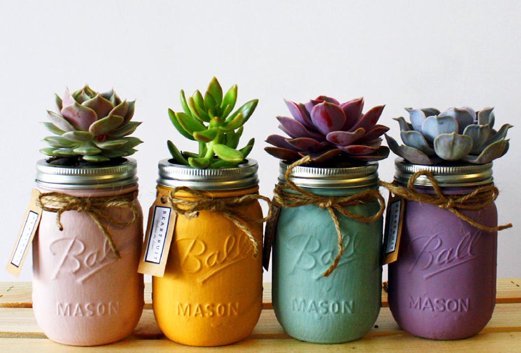 5 ideas para almacenar tus plantas con mucho estilo