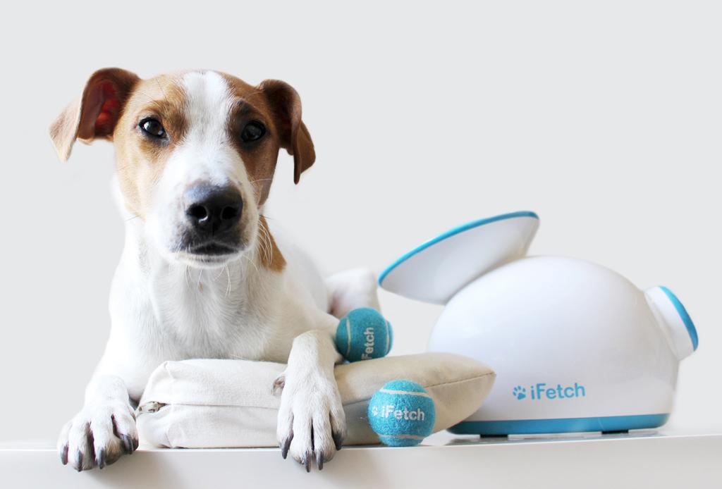 8 regalos que tu mascota amará en esta Navidad - regalos-perros-gadgets-2