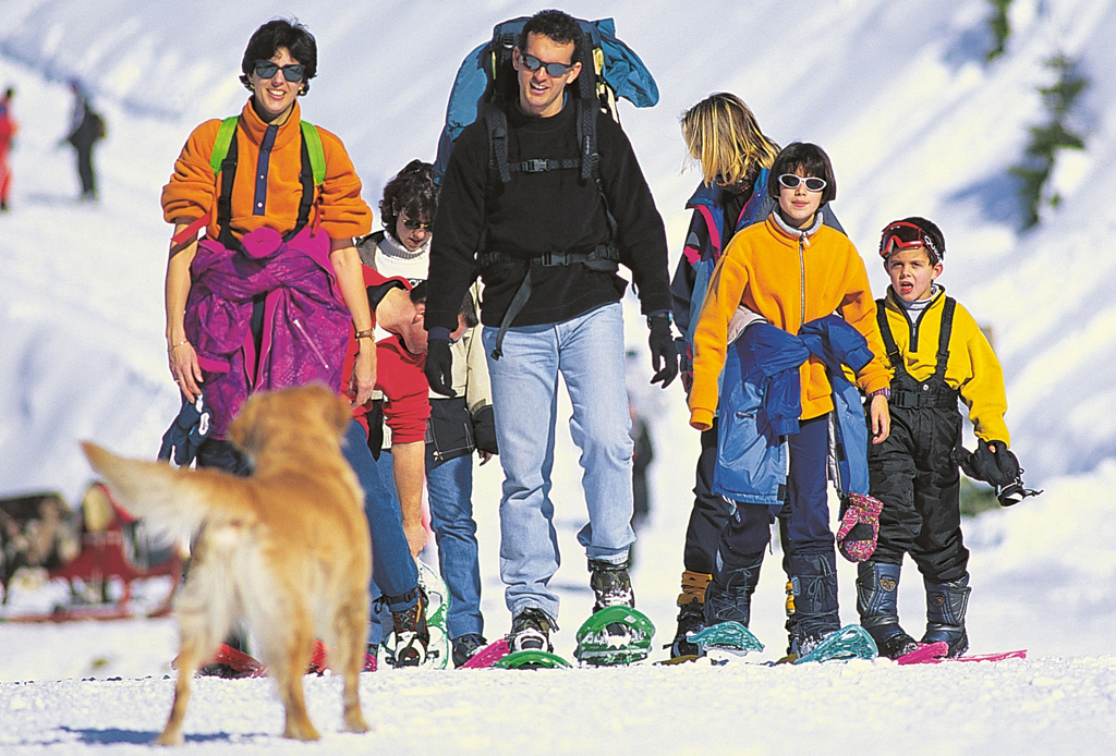 5 resorts dog-friendly para esquiar - resorts-nieve-perros-dog-friendly-4